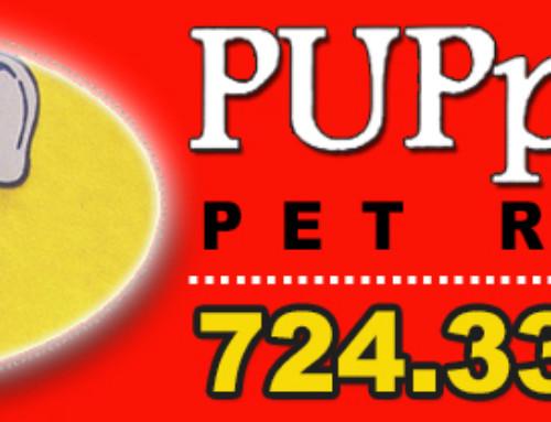 PUPpourri Pet Resort